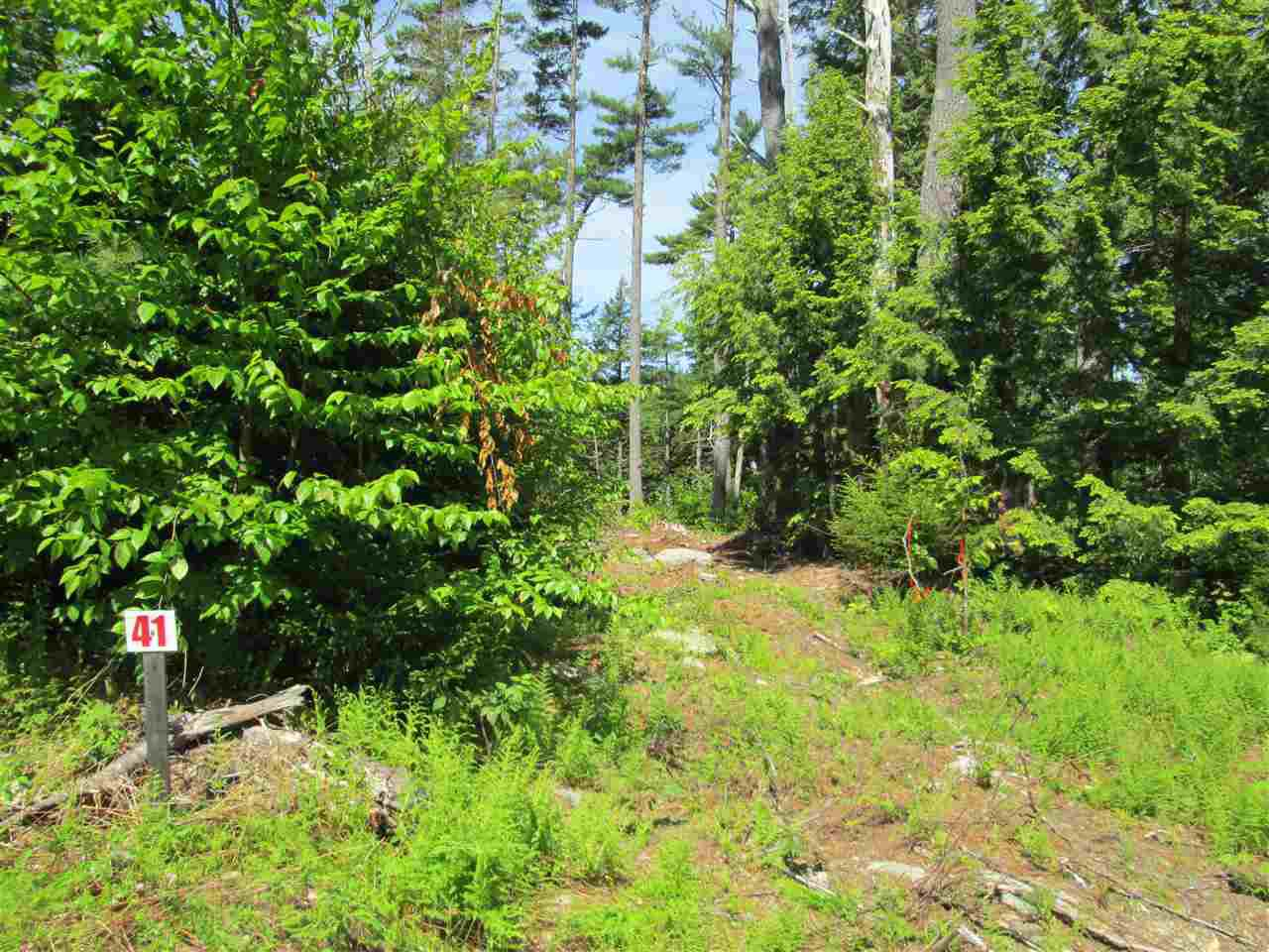 Photo 21: Photos: Lot 41 Homestead Estates Drive in Italy Cross: 405-Lunenburg County Vacant Land for sale (South Shore)  : MLS®# 201610383