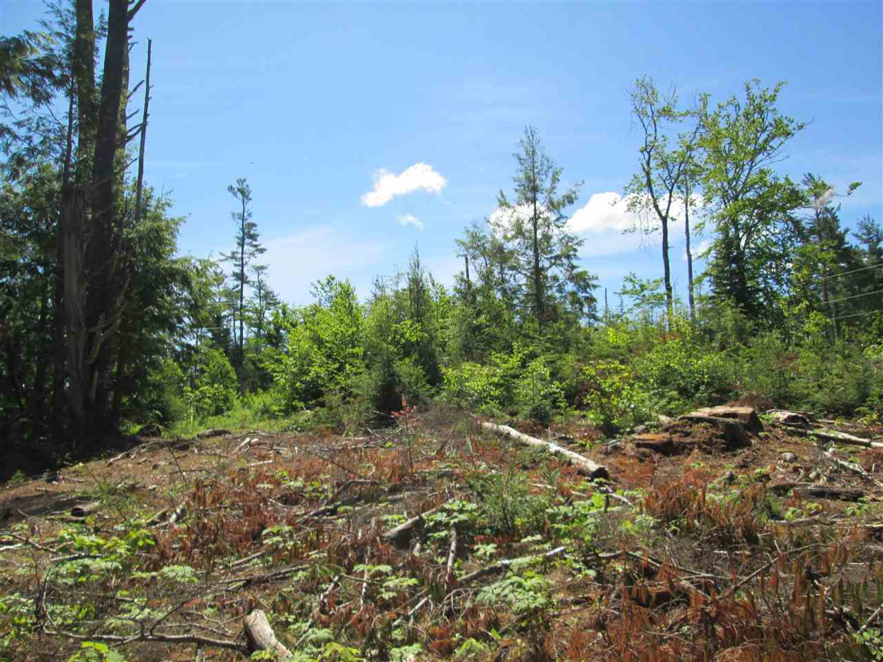 Photo 14: Photos: Lot 41 Homestead Estates Drive in Italy Cross: 405-Lunenburg County Vacant Land for sale (South Shore)  : MLS®# 201610383