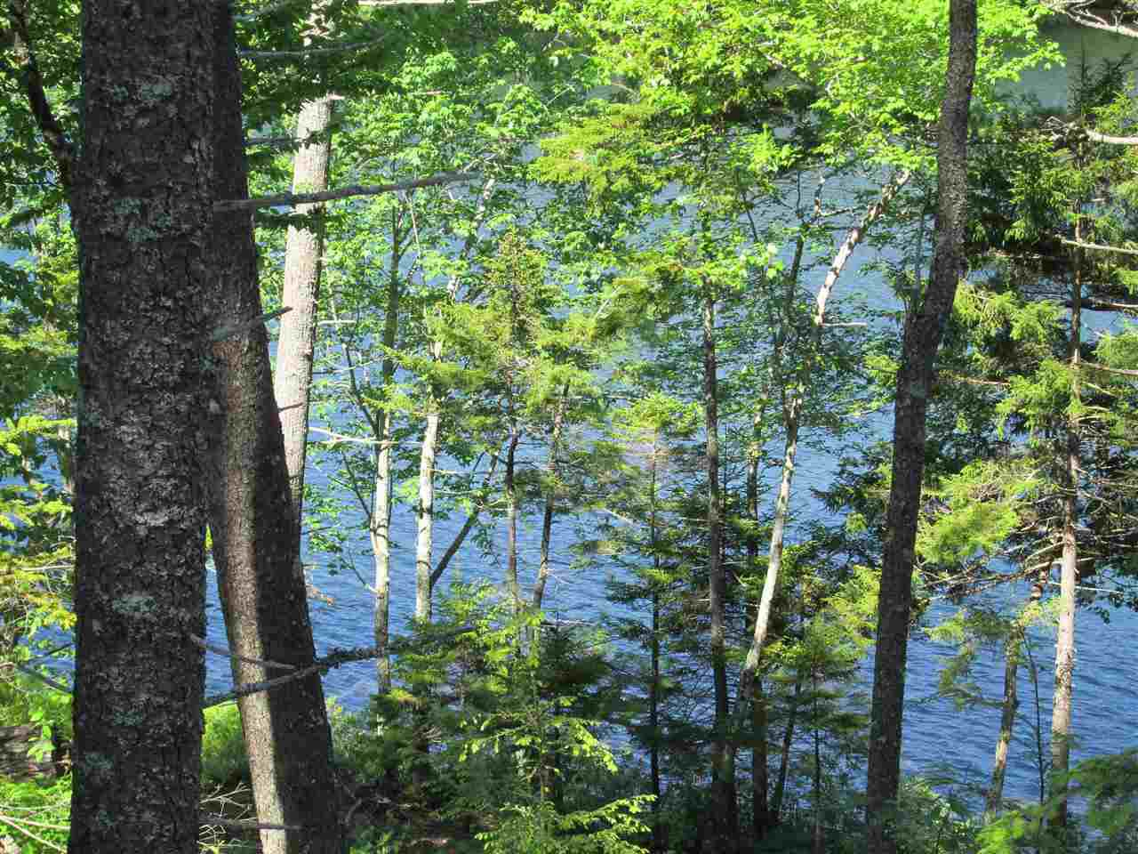 Photo 19: Photos: Lot 41 Homestead Estates Drive in Italy Cross: 405-Lunenburg County Vacant Land for sale (South Shore)  : MLS®# 201610383