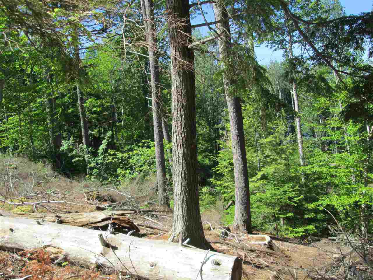 Photo 13: Photos: Lot 41 Homestead Estates Drive in Italy Cross: 405-Lunenburg County Vacant Land for sale (South Shore)  : MLS®# 201610383