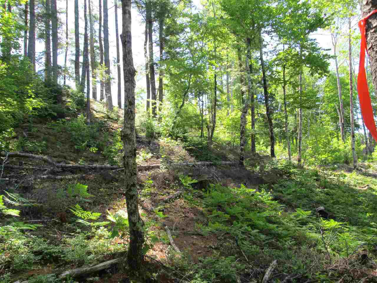 Photo 18: Photos: Lot 41 Homestead Estates Drive in Italy Cross: 405-Lunenburg County Vacant Land for sale (South Shore)  : MLS®# 201610383