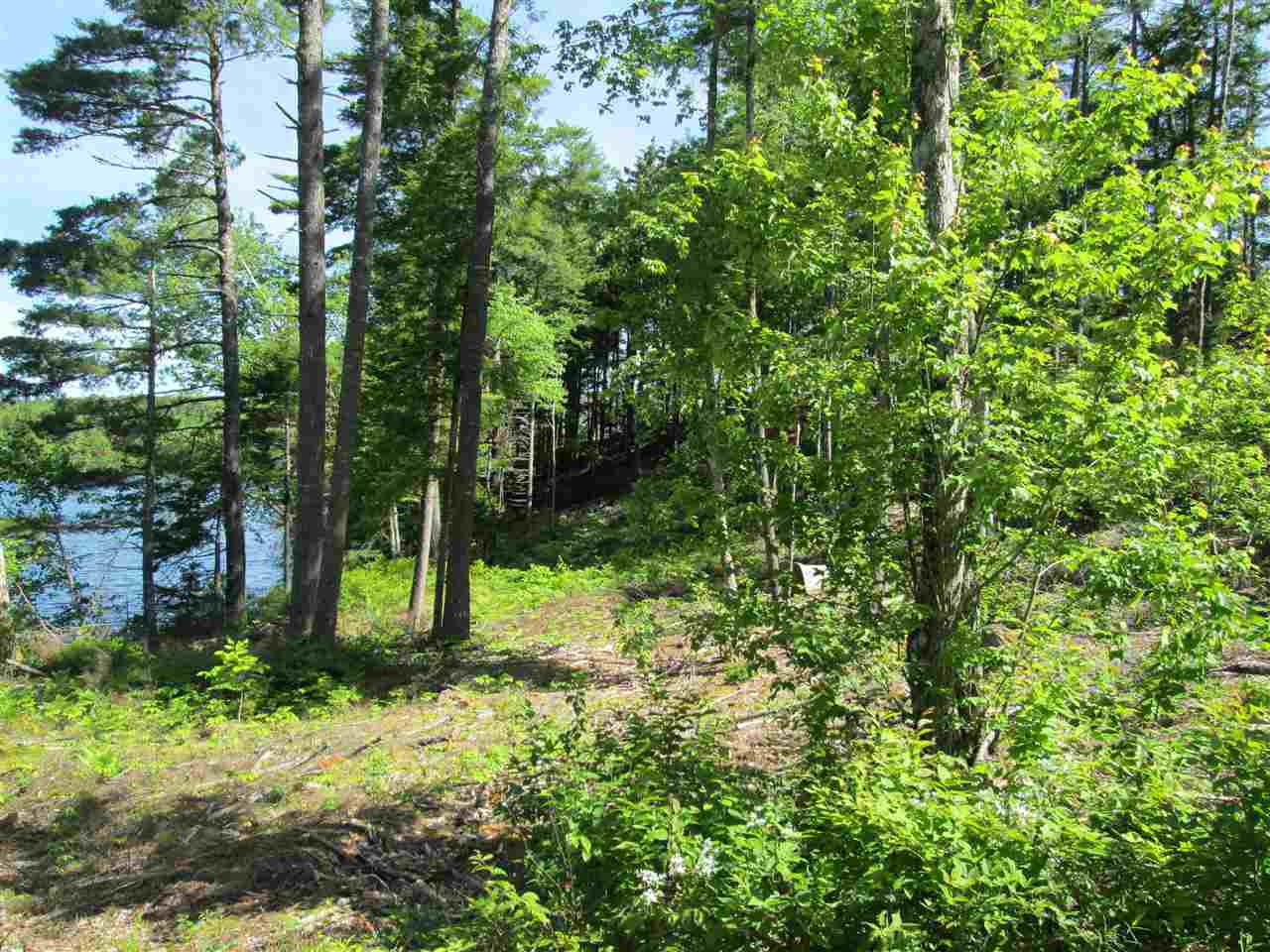 Photo 6: Photos: Lot 41 Homestead Estates Drive in Italy Cross: 405-Lunenburg County Vacant Land for sale (South Shore)  : MLS®# 201610383