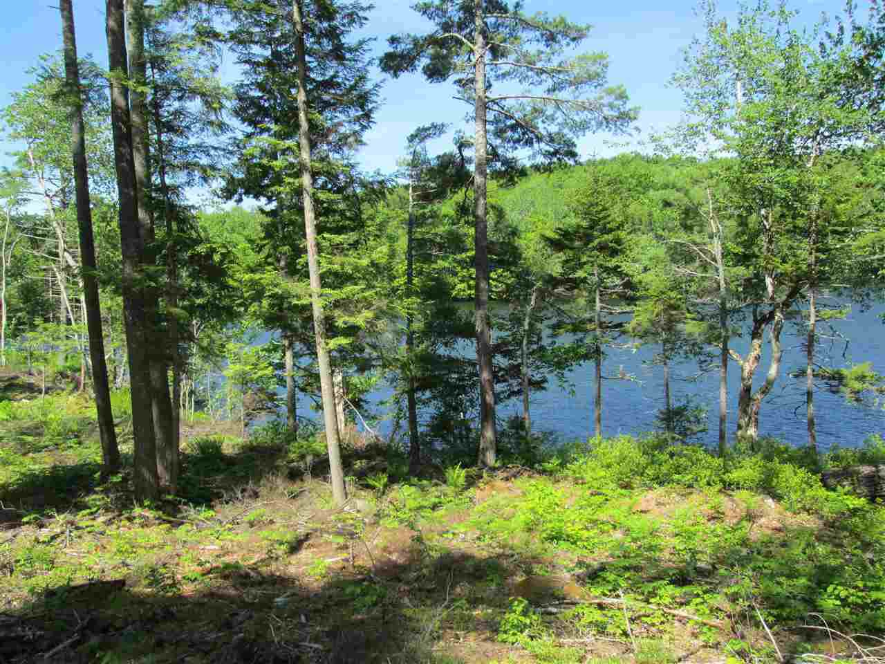 Photo 4: Photos: Lot 41 Homestead Estates Drive in Italy Cross: 405-Lunenburg County Vacant Land for sale (South Shore)  : MLS®# 201610383