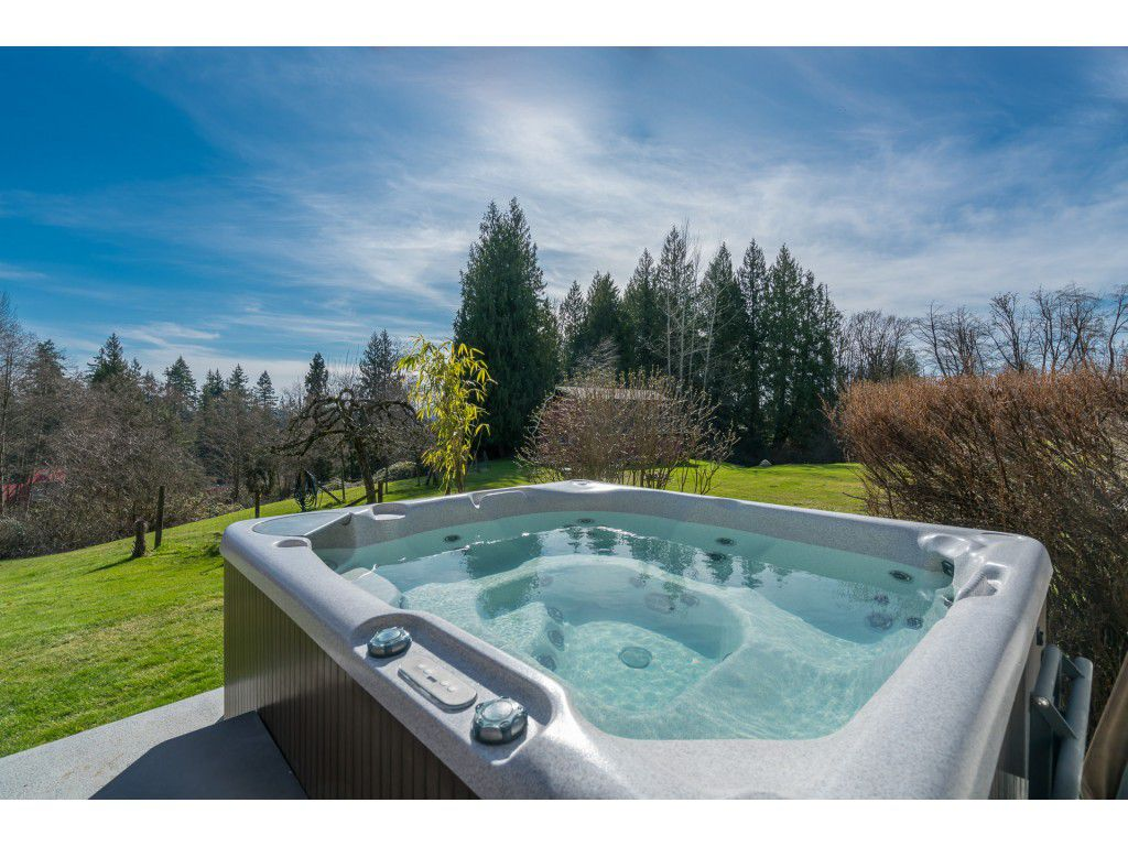 Main Photo: 26742 98 Avenue in Maple Ridge: Thornhill MR House for sale : MLS®# R2247730