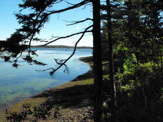 Main Photo: LOT 5 COOKS BROOK DIVERSION HWY 332 in Bayport: 405-Lunenburg County Vacant Land for sale (South Shore)  : MLS®# 5028515