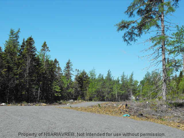 Photo 3: Photos: LOT 5 COOKS BROOK DIVERSION HWY 332 in Bayport: 405-Lunenburg County Vacant Land for sale (South Shore)  : MLS®# 5028515