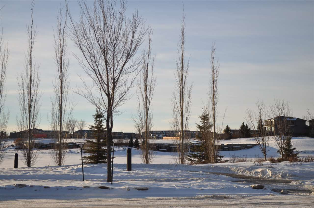 Main Photo: 1177 Hainstock Green in Edmonton: Zone 55 Vacant Lot for sale : MLS®# E4139892