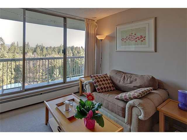 Main Photo: 1406 2008 FULLERTON Avenue in North Vancouver: Pemberton NV Condo  : MLS®# V931644