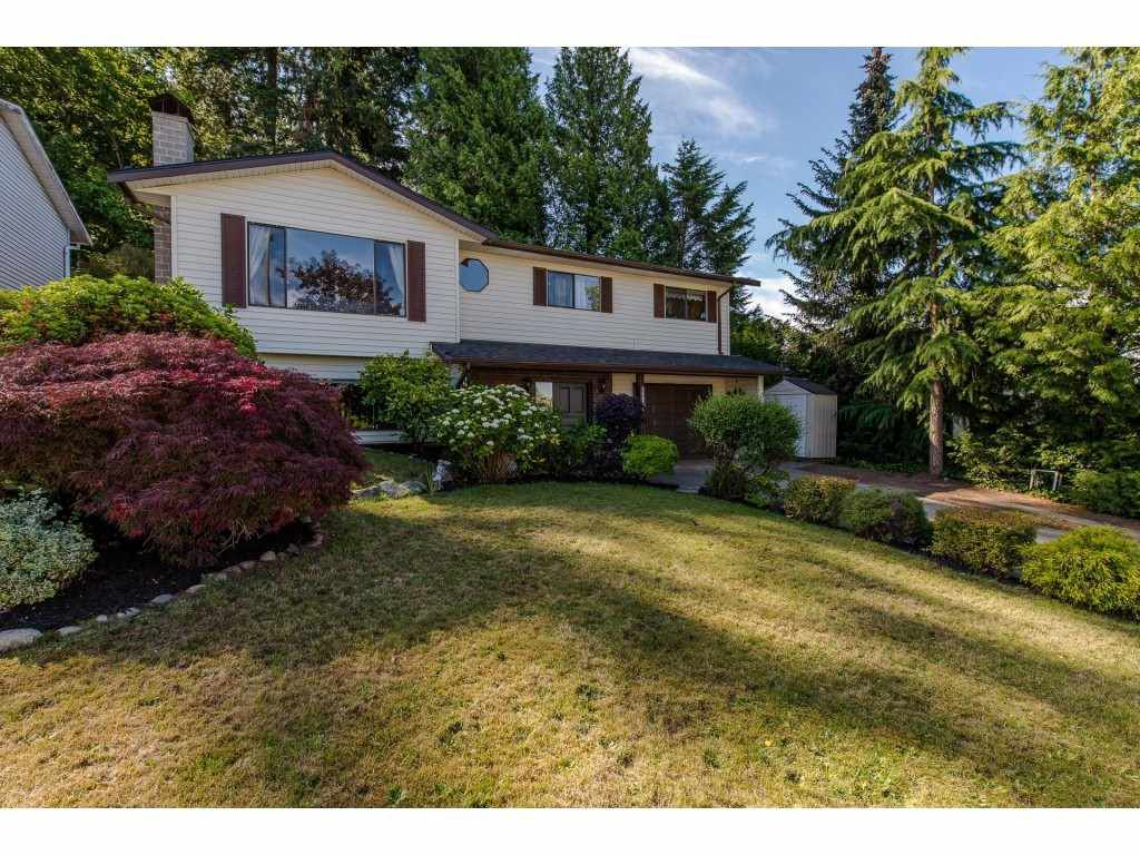 Main Photo: 35074 MCKEE Road in Abbotsford: Abbotsford East House for sale : MLS®# R2286217