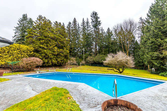 "Main Photo: 557 HADDEN Drive in West Vancouver: British Properties House for sale in ""British Properties"" : MLS®# R2140213"