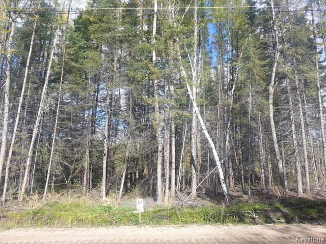 Main Photo: 93 Falcon West Estates in Falcon Lake: R18 Residential for sale : MLS®# 1818045
