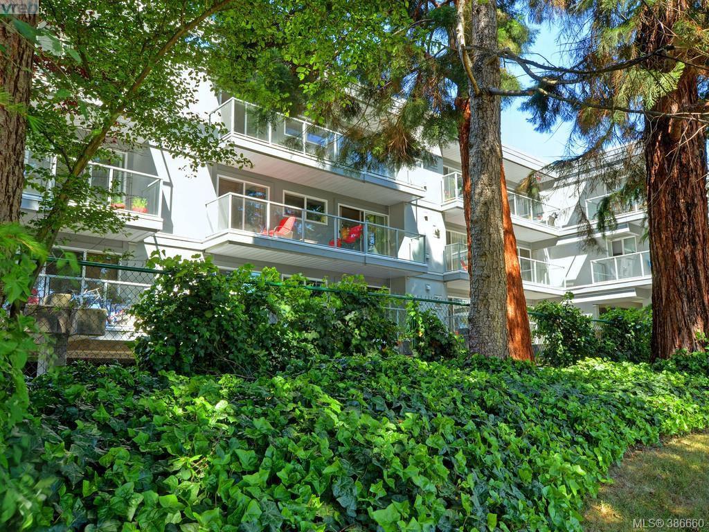 Main Photo: 307 2022 Foul Bay Road in VICTORIA: Vi Jubilee Condo Apartment for sale (Victoria)  : MLS®# 386660