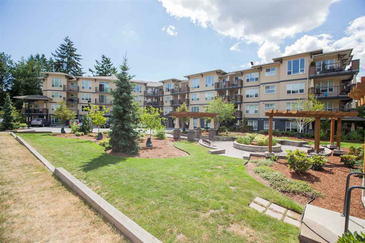 "Main Photo: 424 2565 CAMPBELL Avenue in Abbotsford: Central Abbotsford Condo for sale in ""ABACUS UPTOWN"" : MLS®# R2381899"