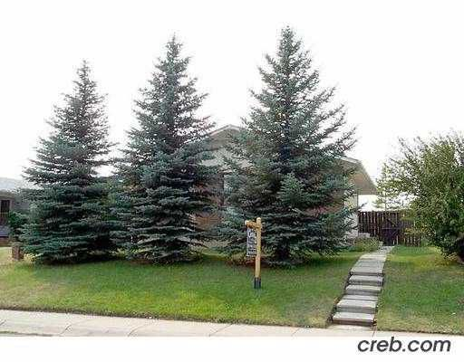 Main Photo:  in : Rundle Residential Detached Single Family for sale (Calgary)  : MLS®# C2182253