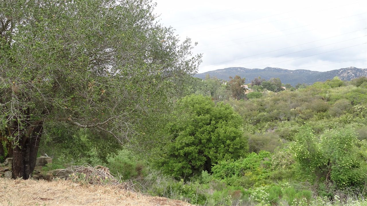 Main Photo: NORTH ESCONDIDO Property for sale: 0 Oakwind Ln in Escondido