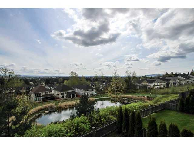 #54 - 1295 Soball St Coquitlam