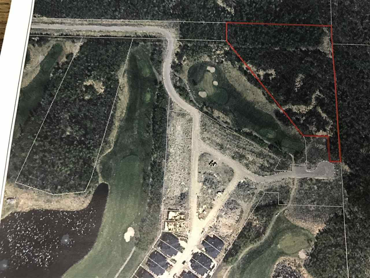 Main Photo: 51101 Range Road 222: Rural Strathcona County Rural Land/Vacant Lot for sale : MLS®# E4161259