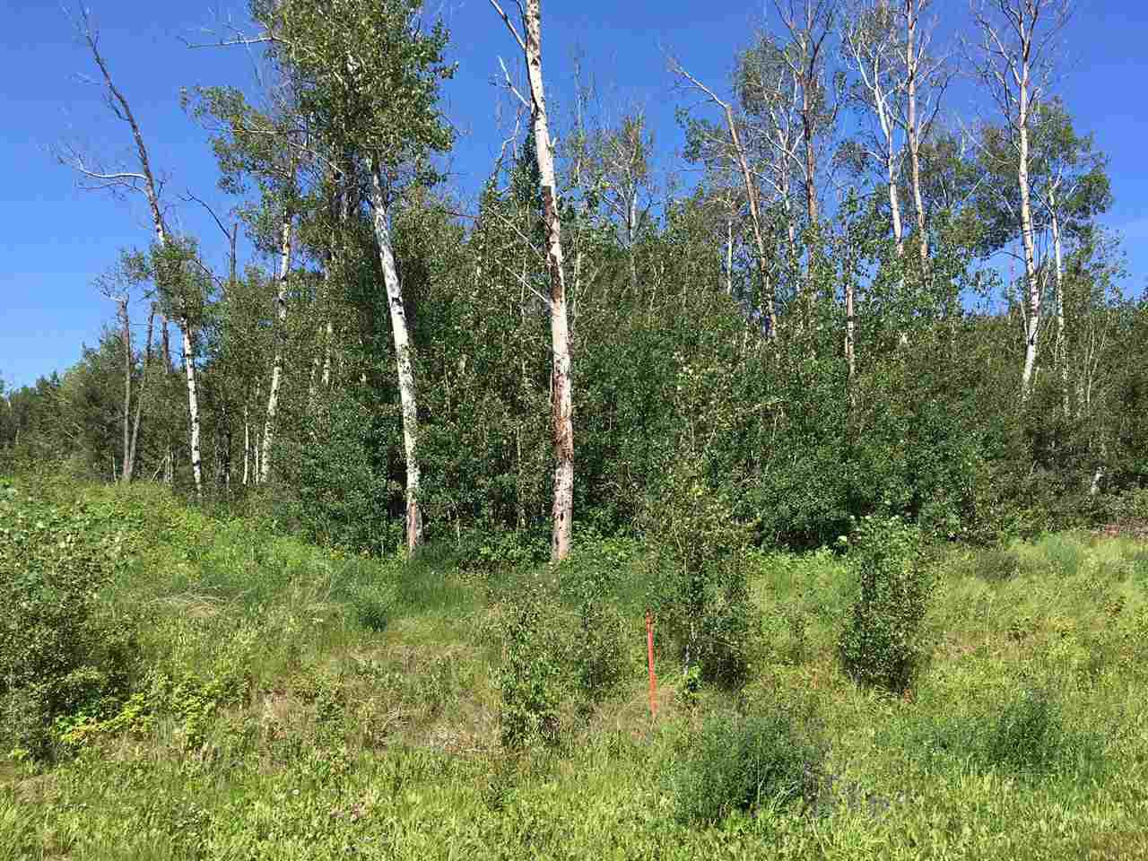 Main Photo: Lot 6 645048 Rge Rd 200: Rural Athabasca County Rural Land/Vacant Lot for sale : MLS®# E4069751