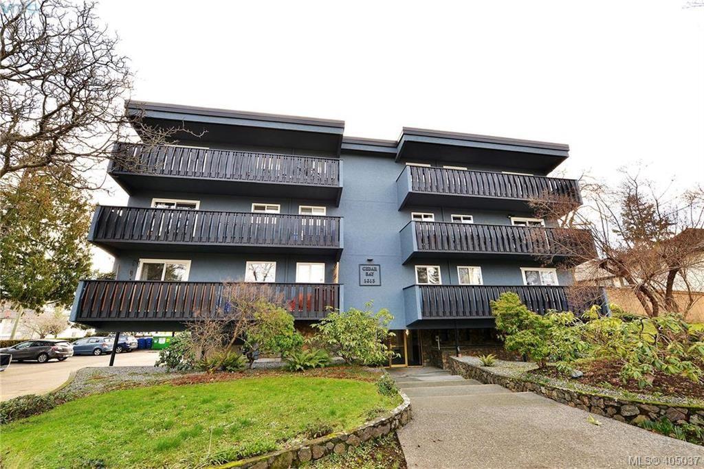 Main Photo: 403 1215 Bay Street in VICTORIA: Vi Fernwood Condo Apartment for sale (Victoria)  : MLS®# 405037