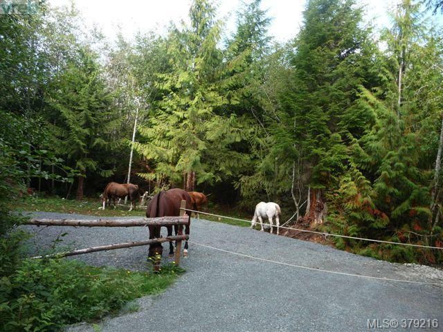 Main Photo: LOT A West Coast Road in SHIRLEY: Sk Sheringham Pnt Land for sale (Sooke)  : MLS®# 379216