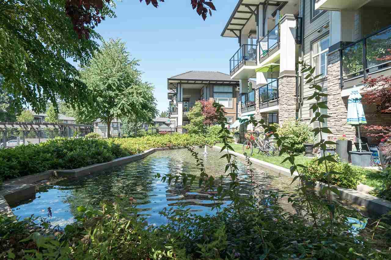 "Main Photo: 116 15195 36 Avenue in Surrey: Morgan Creek Condo for sale in ""EDGEWATER"" (South Surrey White Rock)  : MLS®# R2192480"