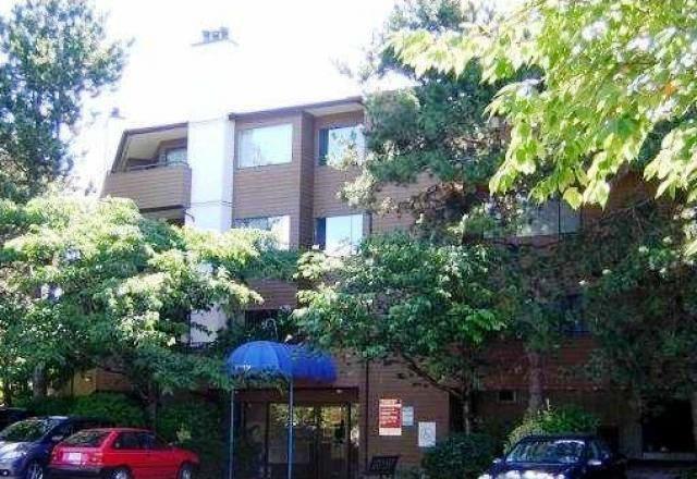 """Main Photo: 304 7297 MOFFATT Road in Richmond: Brighouse South Condo for sale in """"DORCHESTER CIRCLE"""" : MLS®# R2195127"""