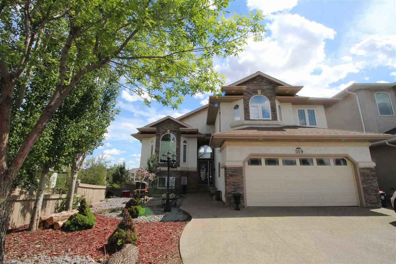 Main Photo: 559 HUDSON Road in Edmonton: Zone 27 House for sale : MLS®# E4127685
