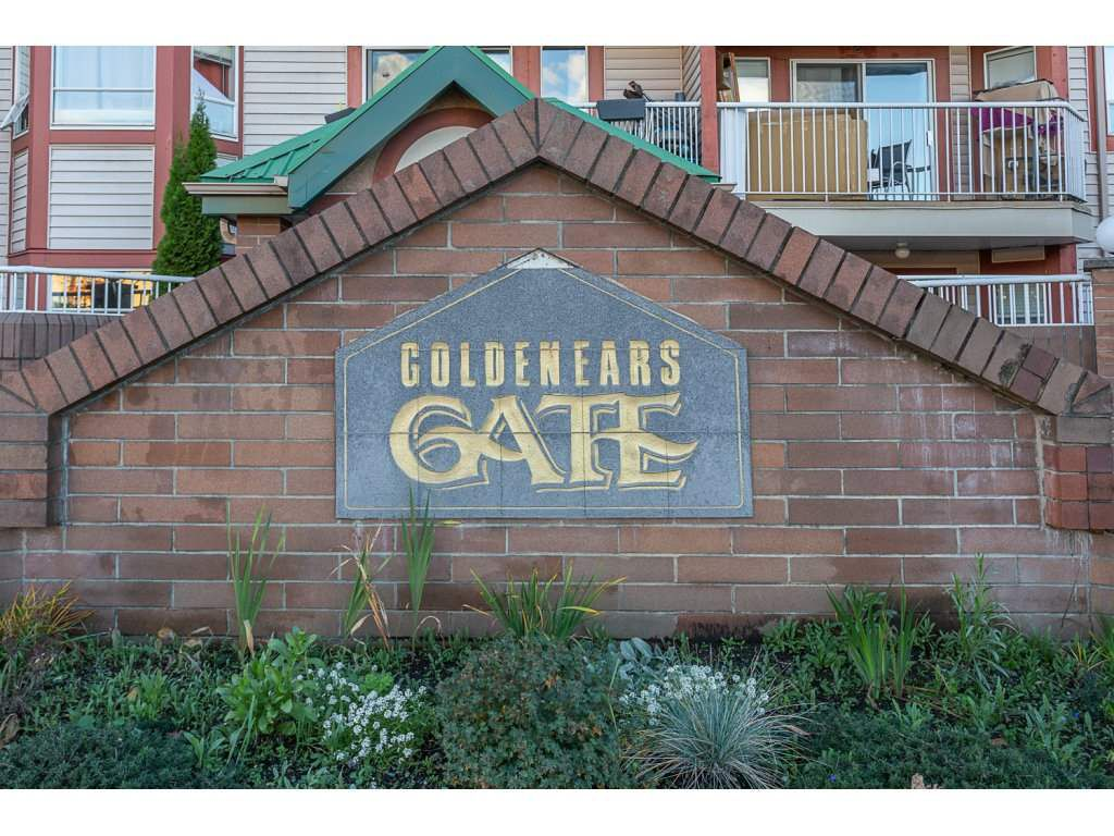 """Main Photo: 325 22661 LOUGHEED Highway in Maple Ridge: East Central Condo for sale in """"GOLDEN EARS GATE"""" : MLS®# R2321366"""