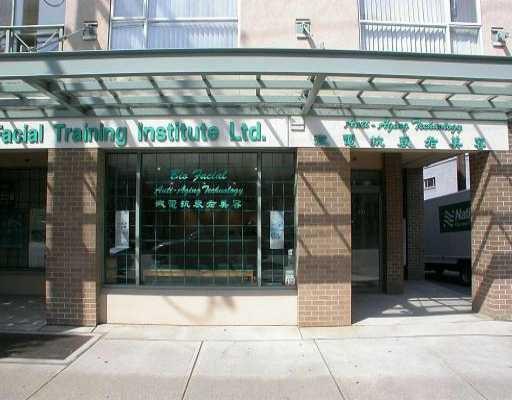 Main Photo: 101 511 7TH AV W: Home for sale (Vancouver West)  : MLS®# V4001828
