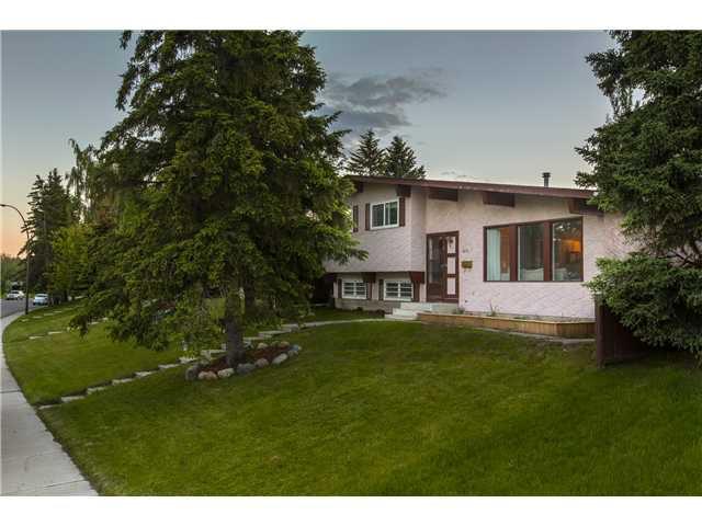 Main Photo: 2215 65 Street NE in CALGARY: Pineridge Residential Detached Single Family for sale (Calgary)  : MLS®# C3570283