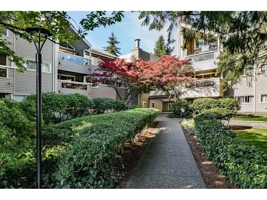 Main Photo: 109 932 ROBINSON STREET in Coquitlam: Coquitlam West Condo for sale : MLS®# R2313900