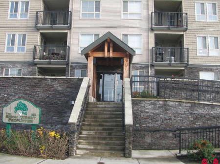 Main Photo: Apartment