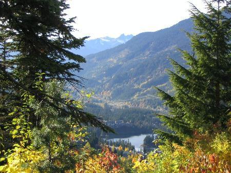 Main Photo: Fantastic Views - On Hill - Revenues