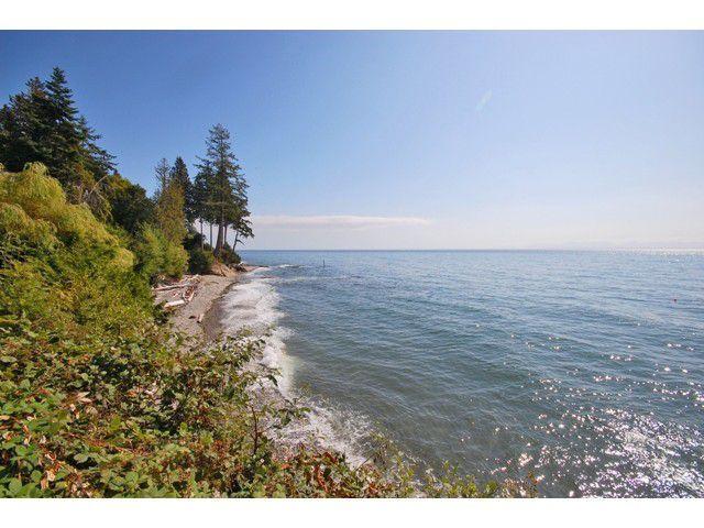 Photo 9: Photos: 3435 BEACH Avenue: Roberts Creek House for sale (Sunshine Coast)  : MLS®# V976445
