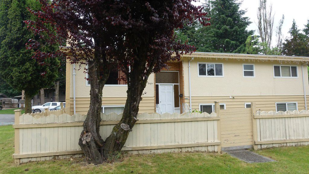 Main Photo: Upper 2424 Adelaide St. in Abbotsford: Abbotsford West Condo for rent