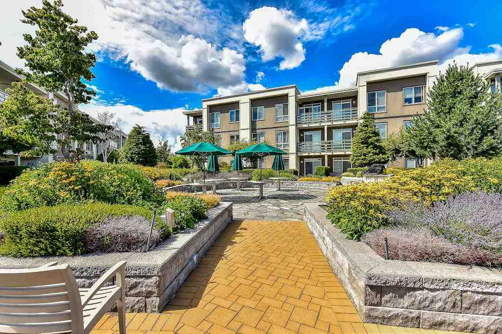 Main Photo: 233 15850 26 AVENUE in Surrey: Grandview Surrey Condo for sale (South Surrey White Rock)  : MLS®# R2090464