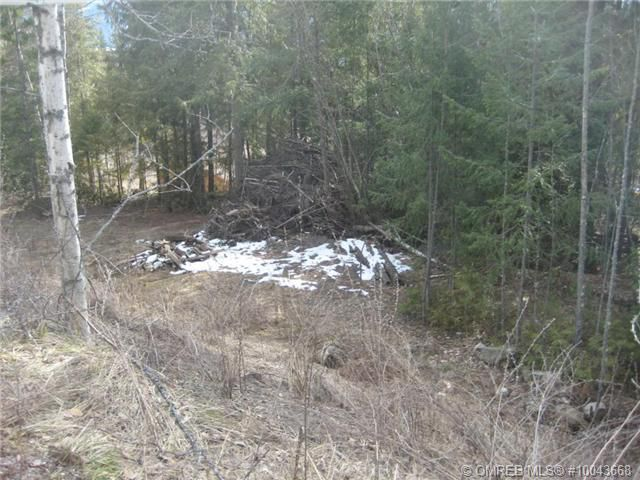 Main Photo: 115 Fraser Road in Anglemont: Land Only for sale : MLS®# 10043668