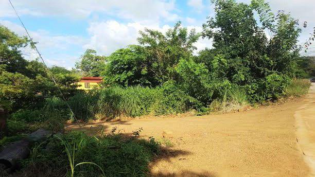 Main Photo: Vista Marina in PLAYAS DEL COCO: Vista Marina Land Only for sale (Playas del Coco)