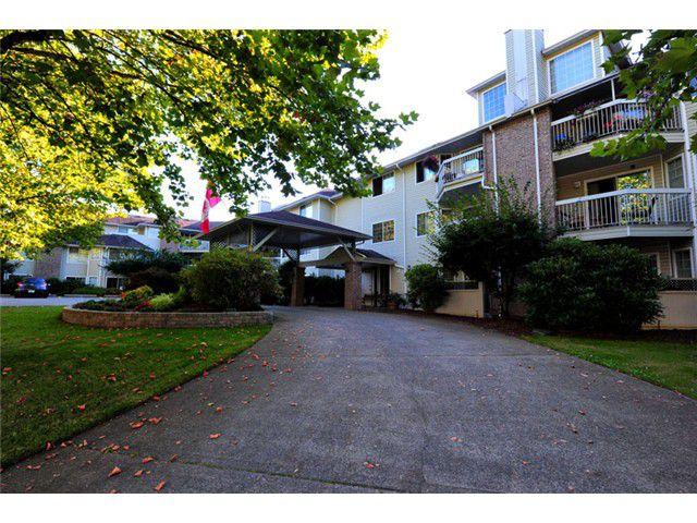 Main Photo: # 309 22514 116TH AV in Maple Ridge: East Central Condo for sale : MLS®# V1041669