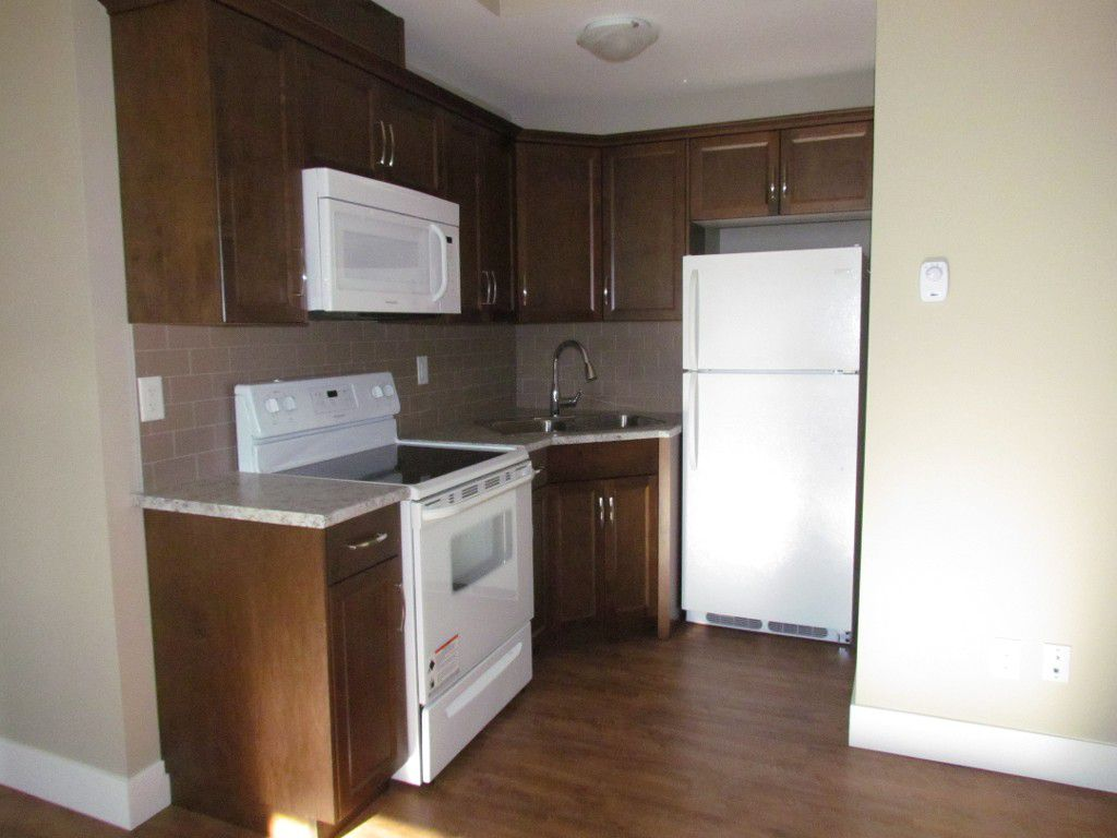 Main Photo: BSMT 36442 Estevan Crt. in Abbotsford: Abbotsford East Condo for rent