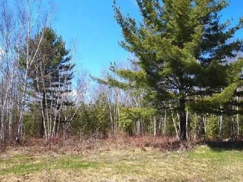 Main Photo: Lot 29 Pinewood Blvd in Kawartha Lakes: Freehold for sale : MLS®# X3573487