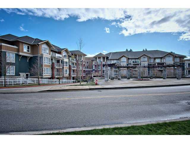 Main Photo: #101 14 E Royal Avenue in New Westminster: Fraserview NW Condo for sale : MLS®# V934214