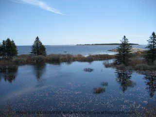 Photo 16: Photos: 1054 BROOKLYN SHORE Road in BEACH MEADOWS: 406-Queens County Residential for sale (South Shore)  : MLS®# 70100227