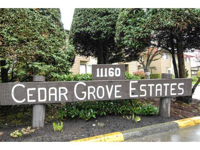 Main Photo: # 29 11160 KINGSGROVE AV in Richmond: Ironwood Condo for sale : MLS®# V1059281