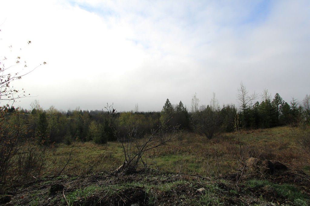 Main Photo: 1/4 2700 Block Squilax Anglemont Road in Lee Creek: North Shuswap Land Only for sale (Shuswap)  : MLS®# 10138544
