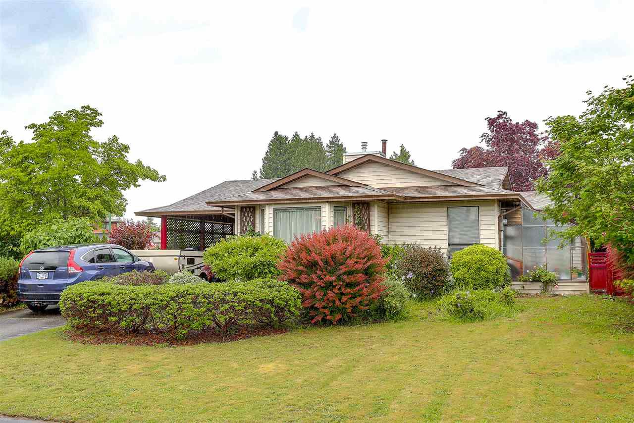 Main Photo: 20461 DENIZA AVENUE in : Southwest Maple Ridge House for sale : MLS®# R2182421