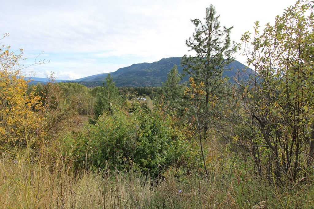 Main Photo: 36 2481 Squilax Anglemont Road in Lee Creek: North Shuswap Land Only for sale (Shuswap)  : MLS®# 10072100