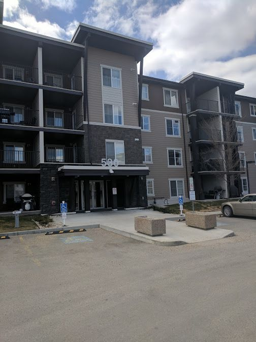 Main Photo: 302, 530 Watt Blvd in Edmonton: Condo for rent