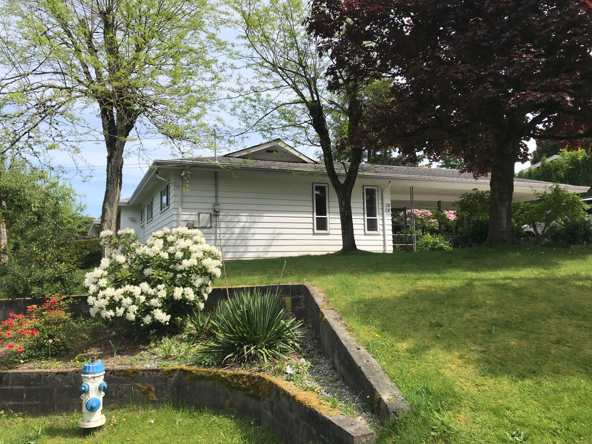 Main Photo: 2828 Arlington St. in Abbotsford: Central Abbotsford House for rent