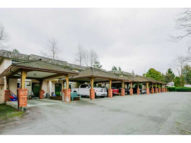 Main Photo: 22737 GILLEY AV in Maple Ridge: East Central Condo for sale : MLS®# V1108009